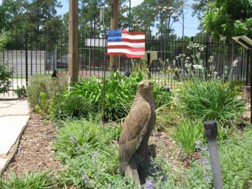 prestonwoodforestud hancock elementary school sensory garden 2