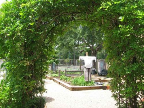 prestonwoodforestud hancock elementary school sensory garden 6